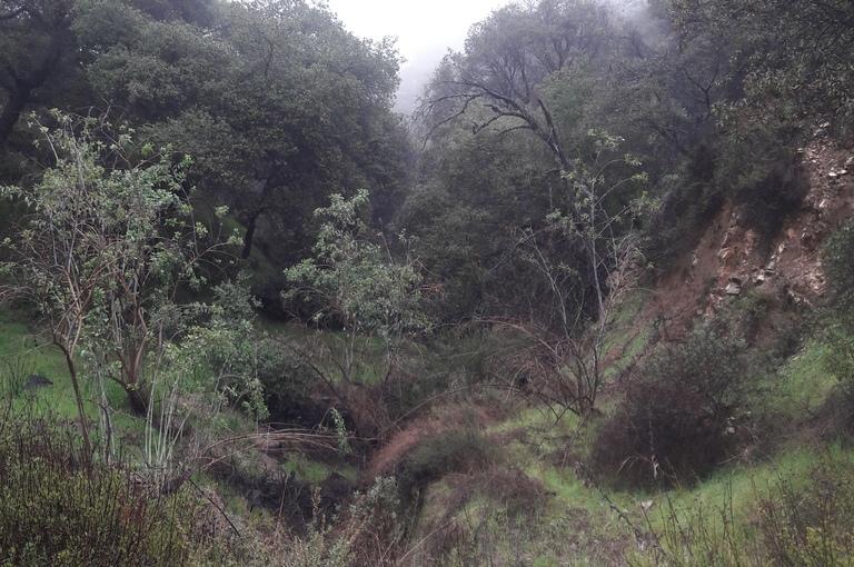 Hike 6/52 Claremont Hills WildernessPark