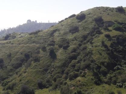 Mt. Hollywood Glendale Loop