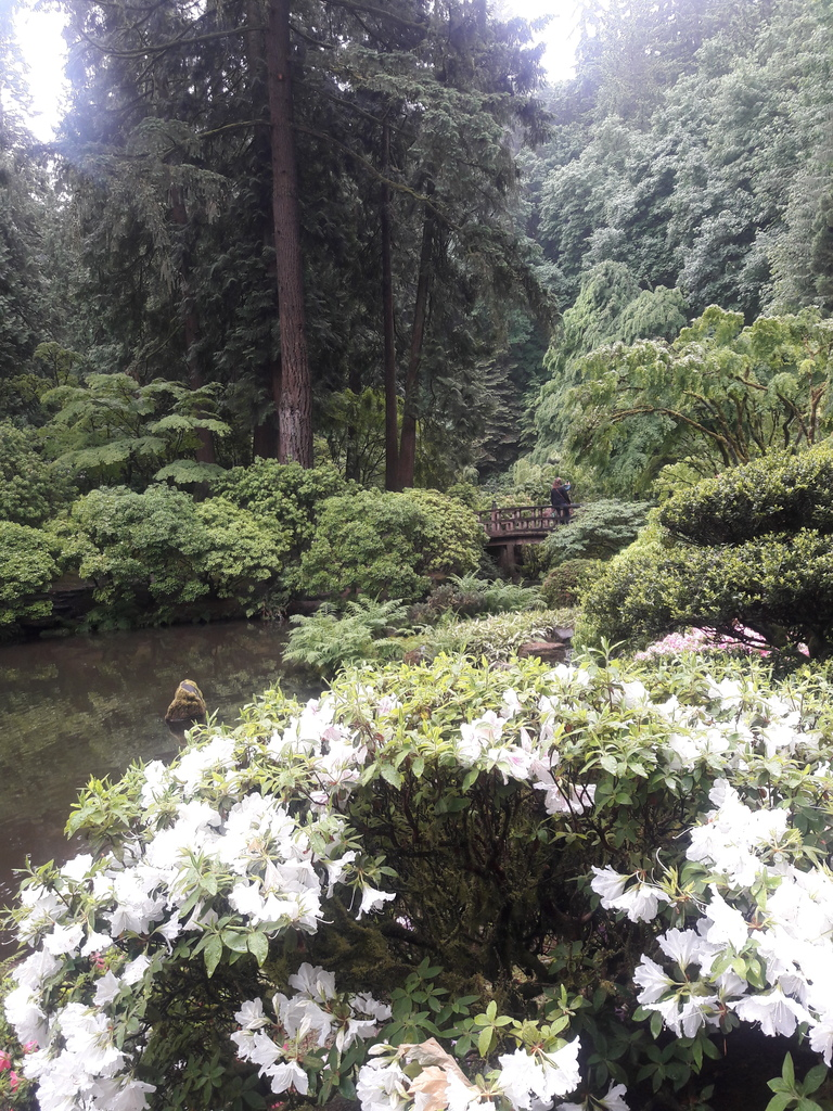Portland Japanese Garden bridge