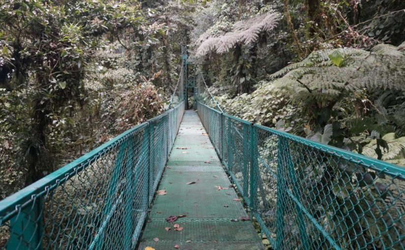 Bridges around theWorld