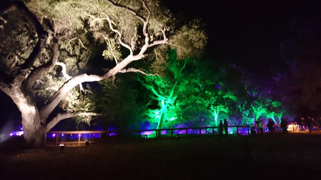 Descanso Garden Holiday lights