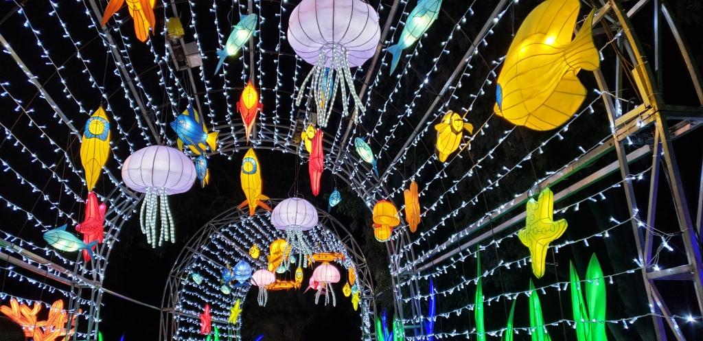 Arcadia Arboretum holiday lights fish