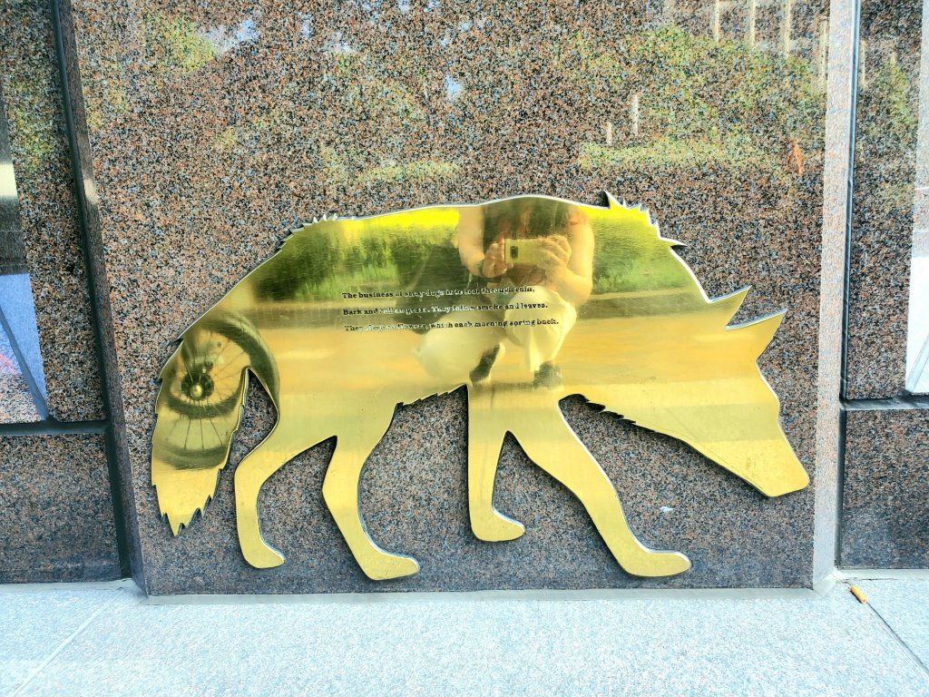 stray dog plaque