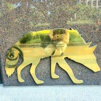 Stray dog (PPAC #13)